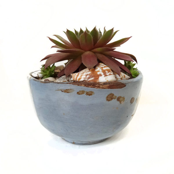 Lichen Glazed Pot, ceramics by Susan Luker
