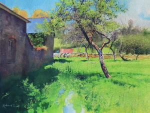 Richard Thorn Watercolour Orchard
