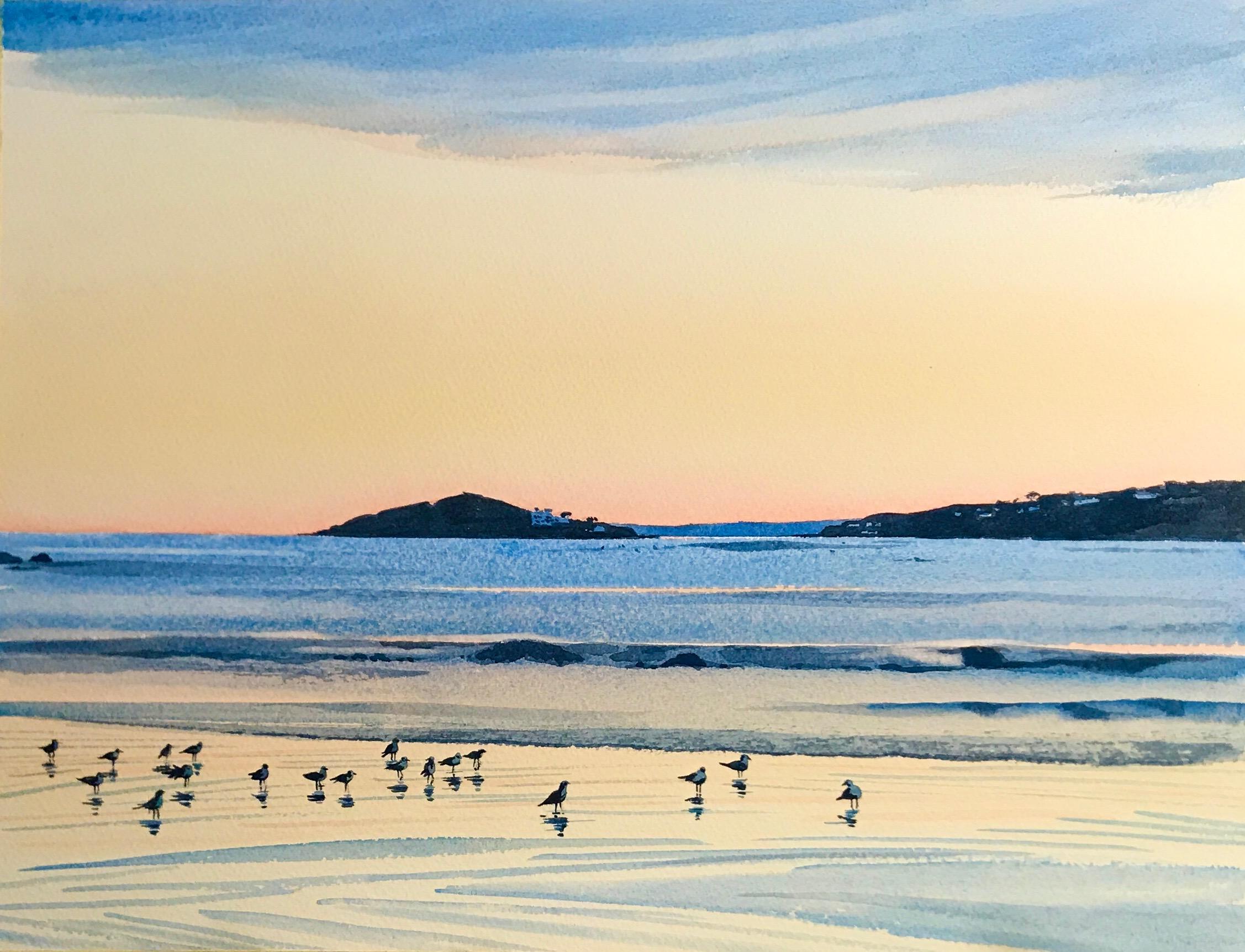 Colony of Gulls by Devon artist Eleanor King